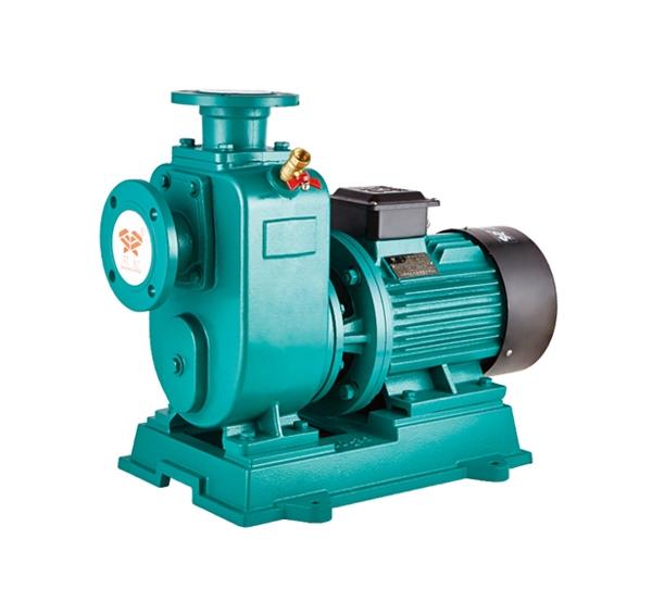 ZW型直联式自吸污水泵